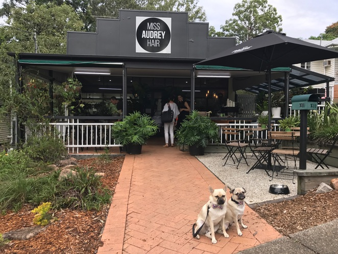 miss audrey coffee, bardon, coffee, cafe, dog friendly, hair salon, miss audrey hair, northern suburbs, north side, western suburbs, brisbane, garden cafe, restaurant, coffee, breakfast, brunch, lunch