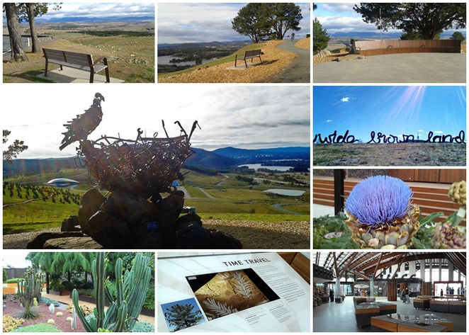 national arboretum, sprout cafe, canberra, dairy farmers lookout, canberra discovery garden, national bonsai collection