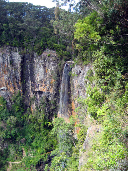 Spectacular scenery at Springbrook National Park