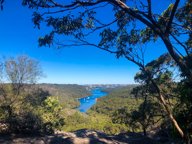 The Bluff Lookout, Seaforth to The Bluff Lookout Bushwalk - image credit Seafarrwide