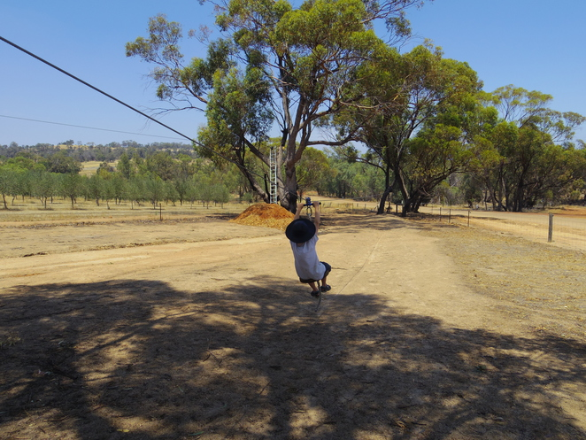 zip line, flying fox, york, adventure