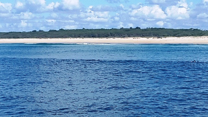 Nine Mile Beach at Tuncurry - great for viewing dolphins