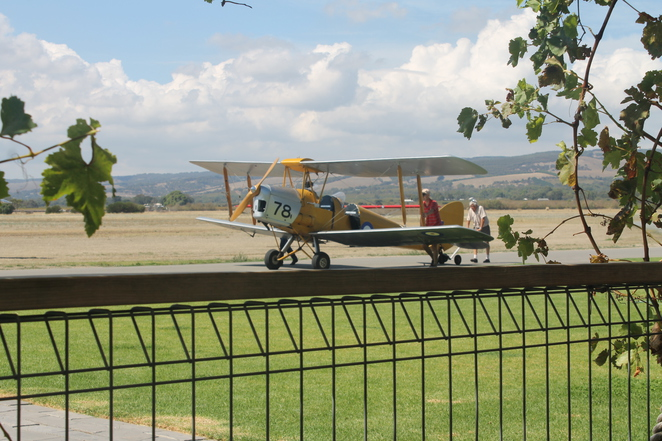 Adelaide, Biplanes, Planes, Joy Flights, Cafe, Family Friendly