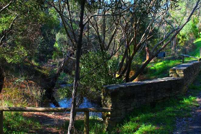 adelaide hills, aldgate, mylor, trail, walking trail, bandicoots, walk, adelaide, dogs, creek