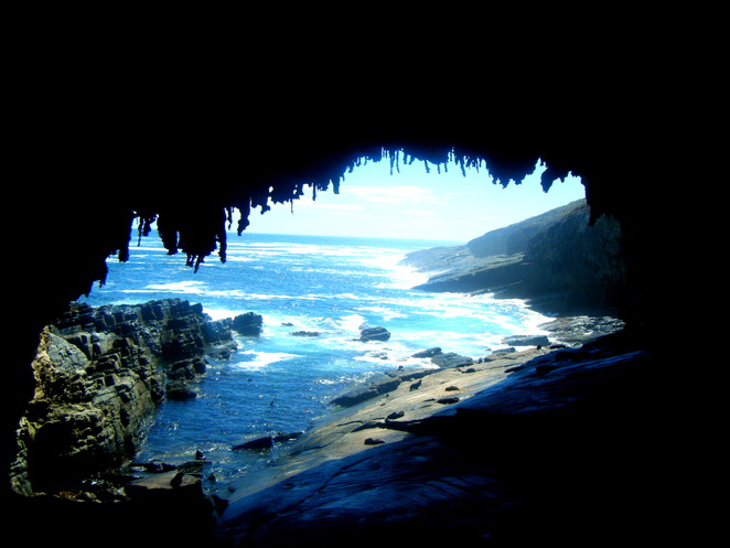 admirals arch, cape du couedic, flinders chase national park, south australia, natural attractions