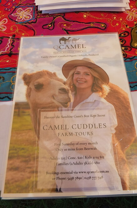 Camel Cuddles Tour at QCamel, family-owned, Sunshine Coast, Camels and Canapes, Camel Cuddles, adventure, pasteurised camel milk, ethical, organic, sustainable farming practices, pasture-fed, no-cull environment, camel milk, camel yoghurt smoothies, cosmetics, David Jones, New Zealand, Singapore, benefits for autism, good fats, probiotics, Vitamin C, outdoor picnic, gazebo, first Saturday every month, school groups, birthday parties, corporate events, Glasshouse Mountain views