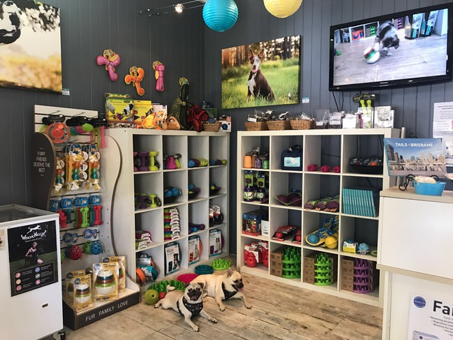 chew chomp chill, auchenflower, pet shop, enrichment toy, pawsitive info, puppy school, brisbane, southside, southern suburbs, henry hottie, therapeutic bed