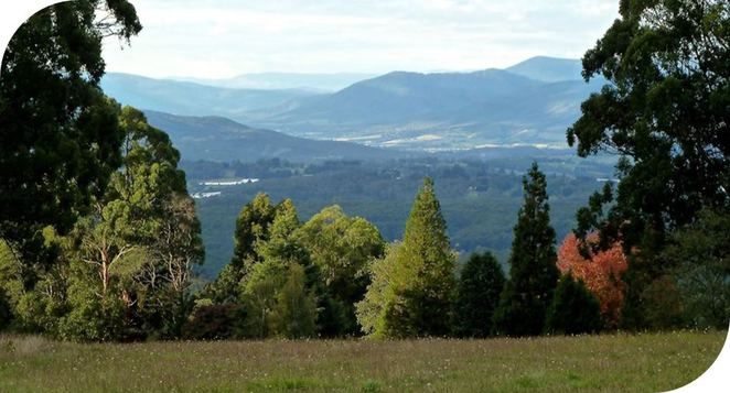 dog-friendly, picnic, views, dandenong, ranges