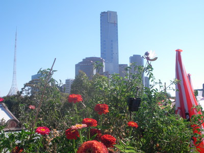 flowers,city buildings