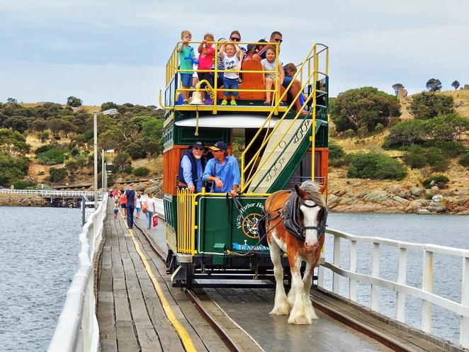granite island, granite island attractions, granite island restaurant, granite island penguins, victor harbor, fun things to do, family fun, horse drawn tram, walking trail, granite island tram