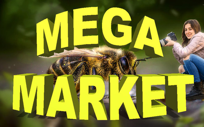 Roleystone Really Huge Mega Spring Market 2018