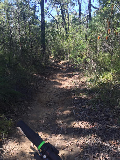 Single track in the Blue Mountains