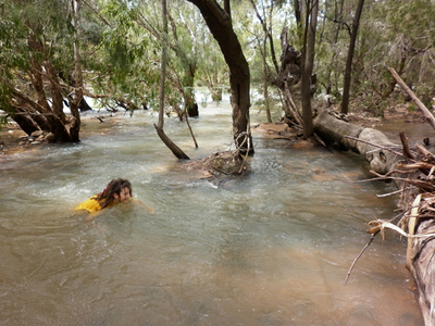 Swimming at Emu Creek