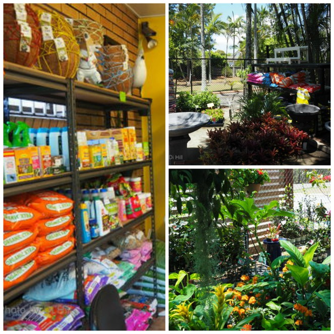 Garden gems plant nursery brisbane for Gardening tools brisbane