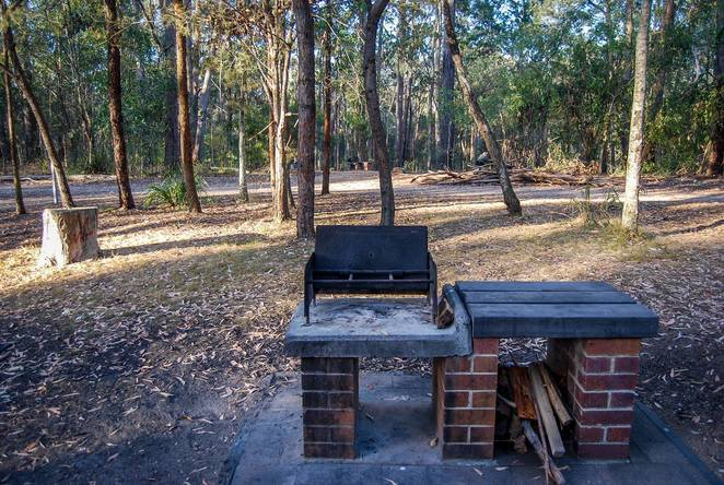 Venman Bushland National Park, picnic area, picnic ground, bbq, bush walks, nature, walking, day trip, picnic area, Brisbane, South East Queensland