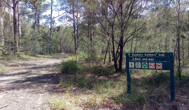 The Soldier's Settlers' Trail is a wide forest trail that links Beerburrum with Tibrogargan