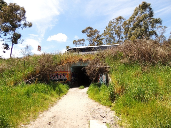 adelaide, park, conservation park, trail, dogs, adelaide hills, creek, free, mount george, tunnel