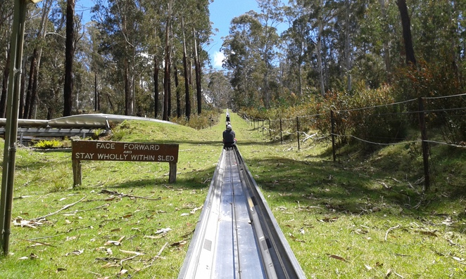corin forest mountainr retreat, bobsledding in canberra, family fun, school holidays, school holiday activities,