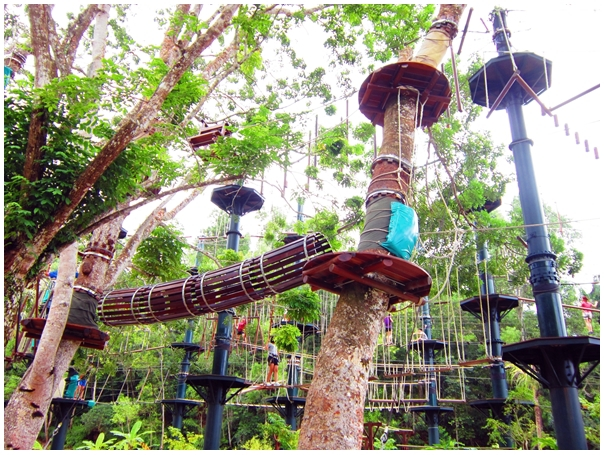 Escape Adventureplay Theme Park, penang attractions, obstacle course, monkey business