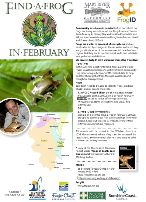 Find a Frog in February, Mary River Catchment Coordinating Committee, citizen science programme, Sunshine Coast Hinterland, Noosa, Gympie, Fraser Coast Council, Maleny, Hervey Bay, Conondale, Kilkivan, Peregian, Burrum Heads, Fraser Island, ecosystems, Giant Barred frog, Cascade Treefrog, Tusked frog, Coastal group of Wallum Froglet, Wallum Rocketfrog,Wallum Sedgefrog,Cooloola Sedgefrog, Green-thighed frog, vulnerable, rare and endangered frogs