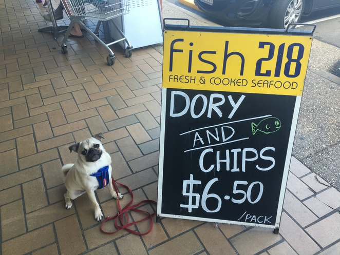 fish 218, eight mile plains, southern suburbs, brisbane, fish and chips, seafood, bulk seafood, fresh, dog friendly, restaurant, fast food, family owned