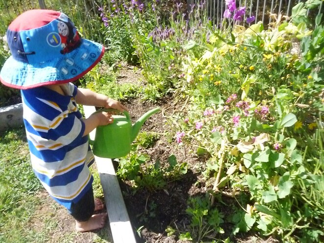 fourteen ways to keep your toddler/preschooler busy in Canberra this year