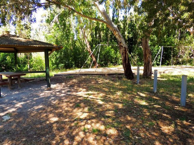 frank smith park, frank smith reserve, park and wetland, frank smith, coromandel valley, dog friendly, walking trails, dog heaven, wetlands, playground equipment