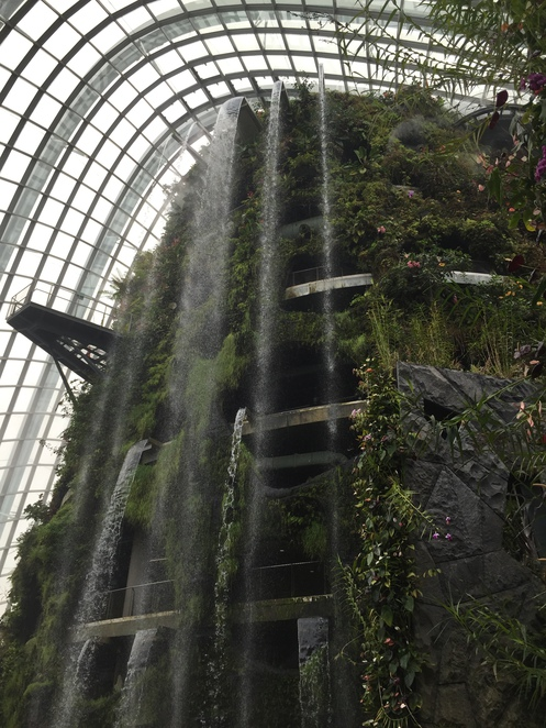 Gardens by the Bay, Singapore, Cloud forest