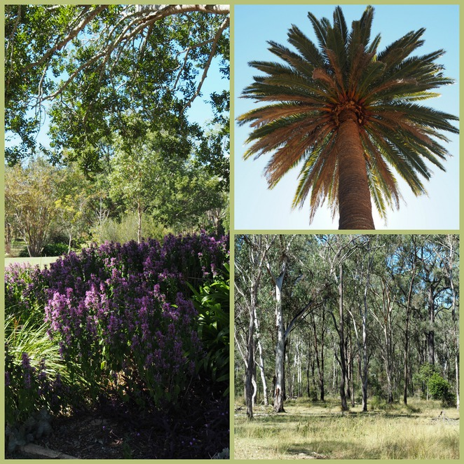 gardens, Taabinga, heritage accommodation, Kingaroy,