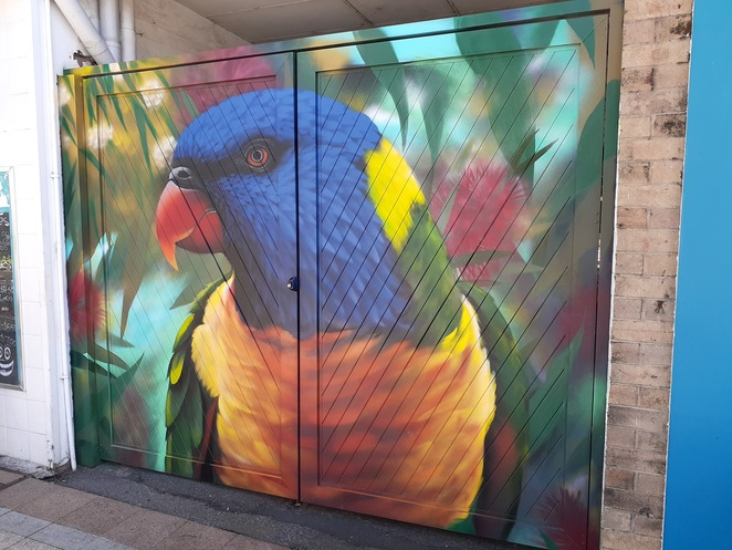jordon lucky, mural, street art, nelson bay, magnus street, port stephens council, vibrant spaces fun, NSW, street art murals, lorikeet, Australian birds