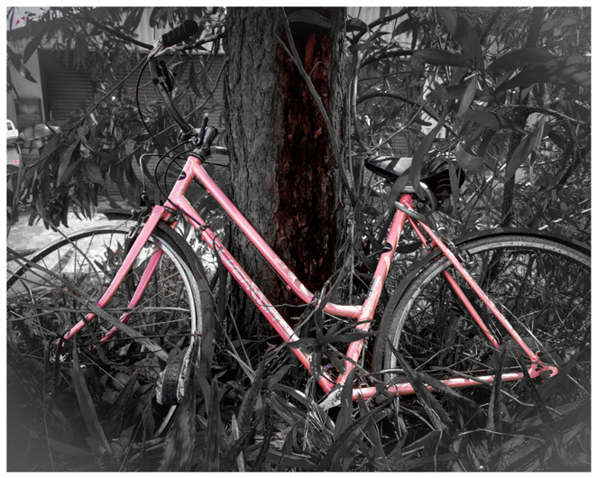pink bike, racecourse road, breast cancer pink'd up