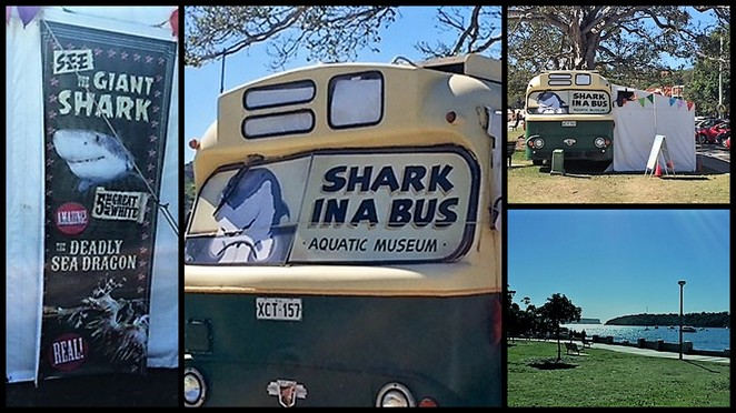 Shark in a Bus Mosman Balmoral Beach Sydney Museum Heritage Museum Shells Great White Skylab Space Station Whale Bones