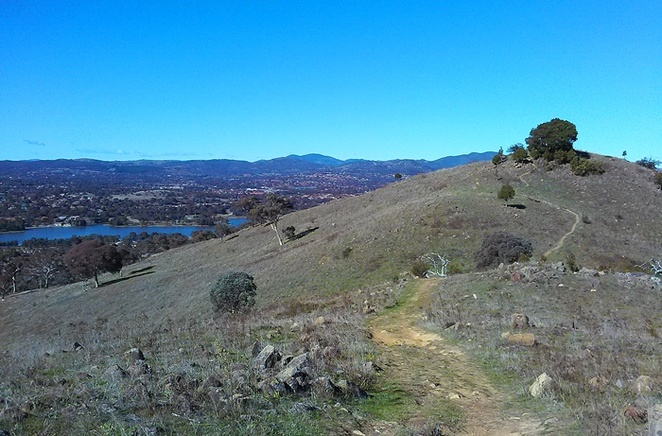 urambi hills, canberra, ACT, walking paths, bushwalks, short walks, ACT, canberra nature park, walks, easy walks,