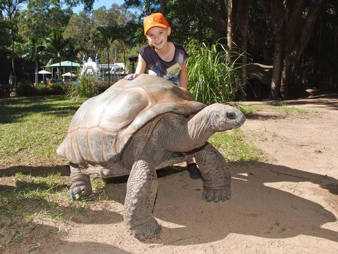Easter holiday fun, Australia Zoo, Robert's Treasure Hunt, cheetah club, exotic snakes, Terri, Bindi and Robert feed the crocs, Bindi and the Jungle Girls, Island Time, Jungle Girl Meet and Greet, Free face painting, pony rides, colouring competition, major prize draws, Robert's merchandise, be a zoo keeper for a day, Easter weekend Festivities, Free Good Friday breakfast, giant Easter egg hunt, Easter Bilby, Easter eggs, Hot Cross buns