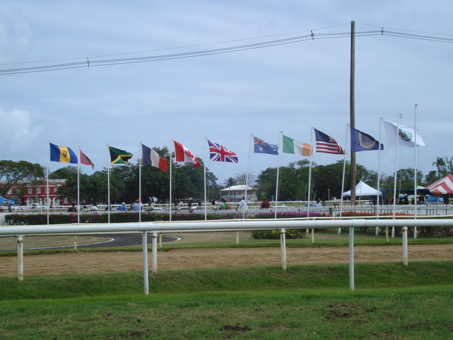 Flags flying on Race day
