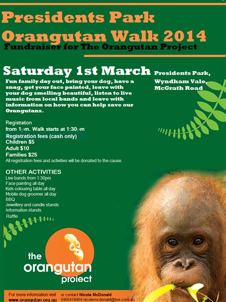 orangutan project, werribee, fundraising, walks