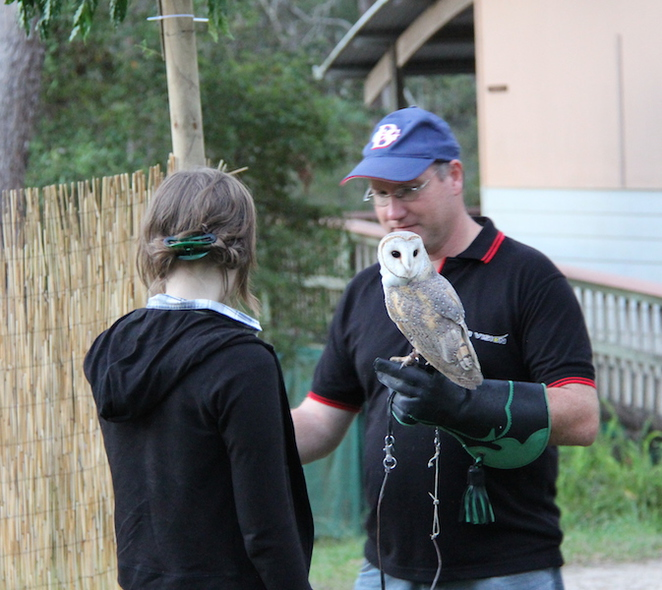 Raptor Vision, Owls, Dave - The Bird Dude, An Evening with Owls, Image by Selina Shapland