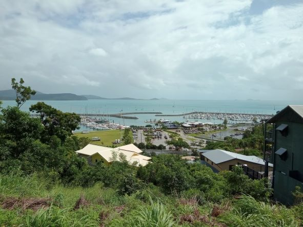 View over Cannonvale and beyond - courtesy of author 2021.