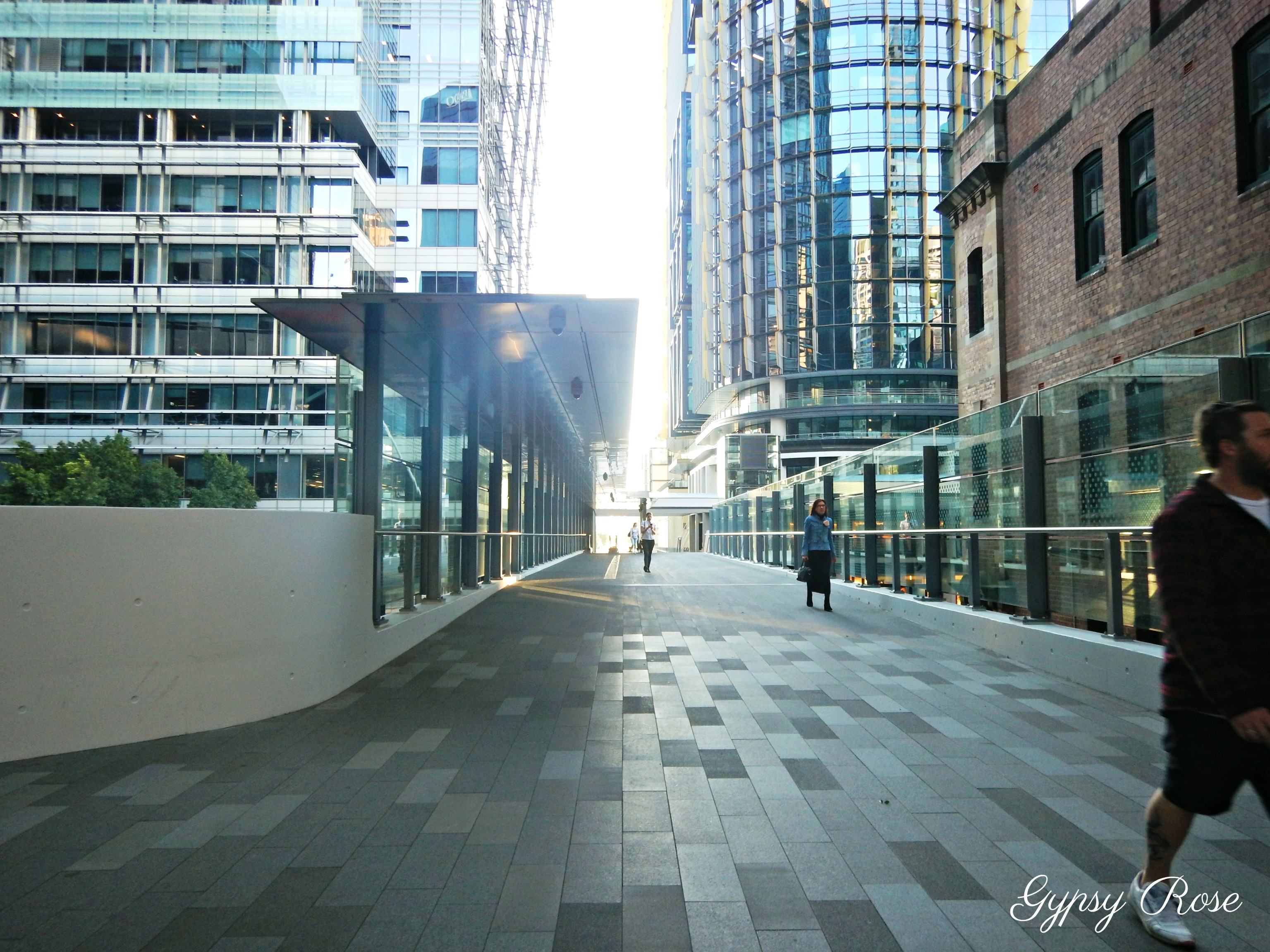 how to get from wynyard to darling harbour