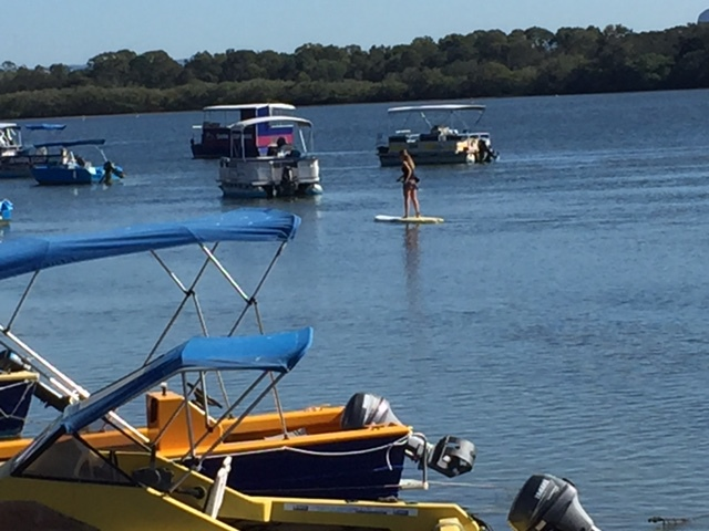 Bradman Avenue, Maroochy River Foreshore, Stand-up paddling, boating, viewing, picnic areas, dog off-leash area, childrens playground