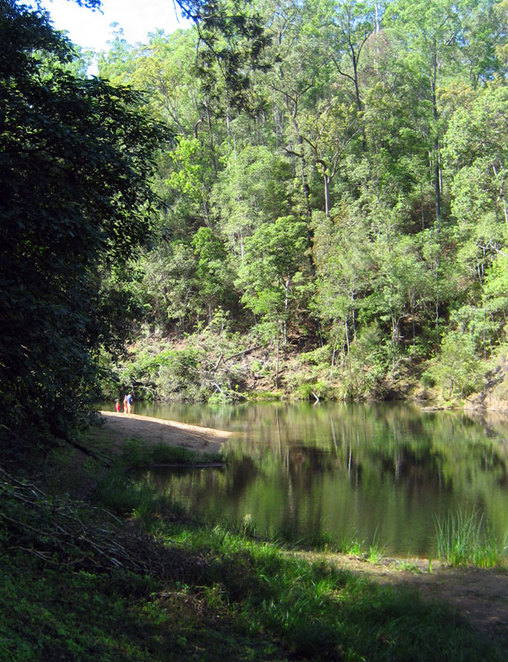 Little Yabba Creek at the Charlie Moreland Campground