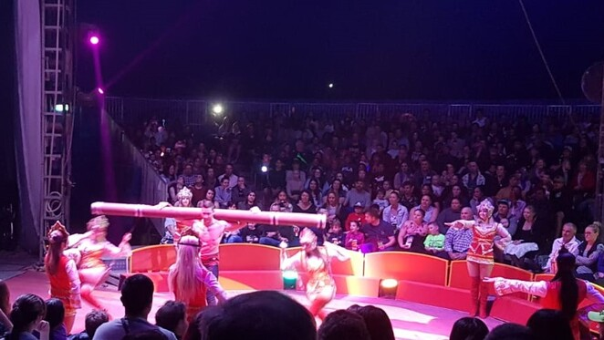 circus, The Great Moscow Circus