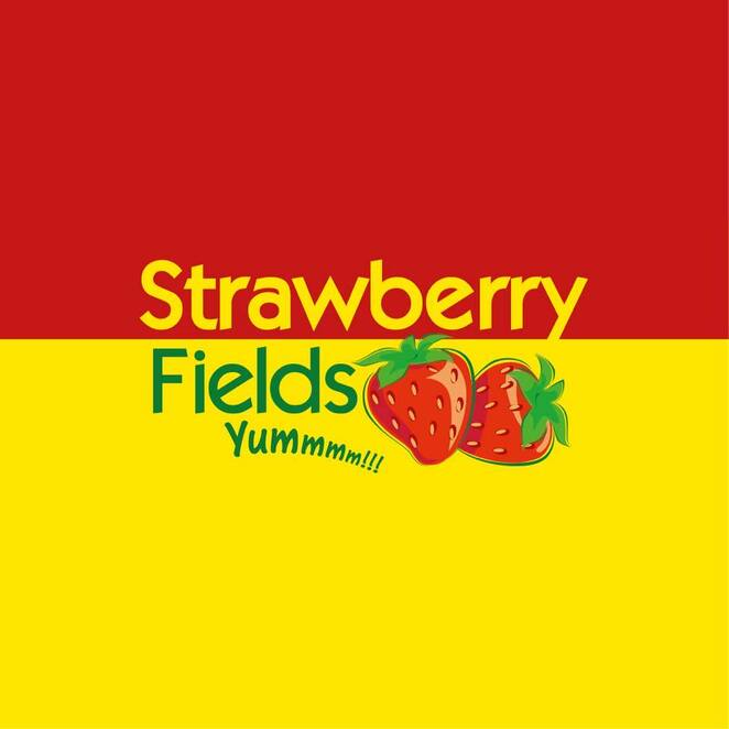Eight of the best PYO strawberry farms in QLD, McMartin's Strawberry Farm and Strawberry Lane Ice Creamery, Bli Bli, Maroochy Wetlands Sanctuary, Maroochy River, Maleny Milk, Devonshire teas, markets, Strawberry Fields, Palmview, Rolin Farms, Elimbah, orchids, Chambers Flats Strawberry Farm, Tinaberries, Bundaberg, family-run farms, Ashbern Farms, organic summer strawberries, Stanthorpe, colder region, Cooloola Berries, Gympie, farm gate to plate, award-winning, blueberry picking, strawberry cider, blueberry cider, Paella in the Park, wedding venue, SSS Strawberries, North Bundaberg, high nutrition value, vitamin C, folate, fibre, low in sugars, no saturated fat, low calories, potassium, heart happy, immune system fighting fit, dose Vitamin D, outdoor family fun