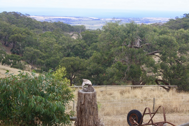 Looking out across the valley of the Southern Vales high on Willunga Hill