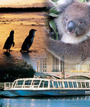 melbourne, attractions, tourist, cheap, things, to, do, savings, coupons, vouchers