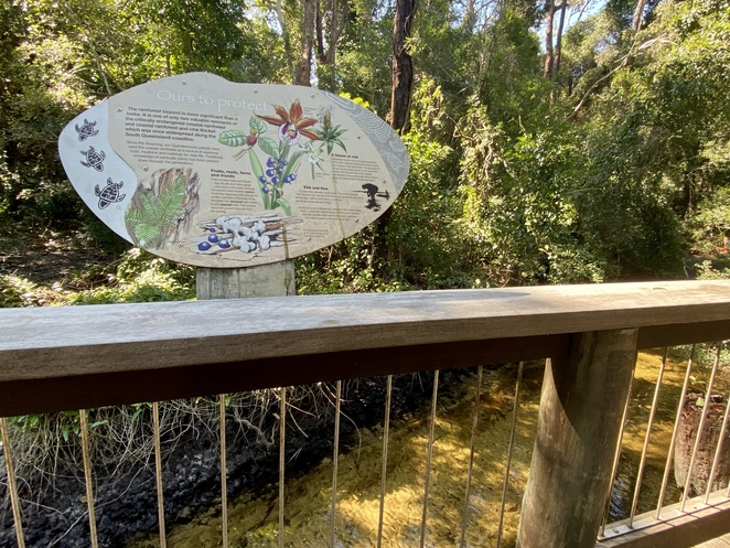 Myora Springs is a protected habitat that sits within a conservation reserve