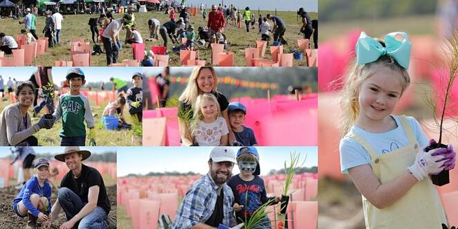 National Tree Day Sunshine Coast, free event, be part of something big, by doing something small, Sunshine Coast Council, BushCare Sunshine Coast, Doonan Creek Environment Reserve, Verrierdale, preserve, rehabilitate natural bushland, meet new people, stay healthy and active, learn new skills, connect with nature, invite family and friends, plant native trees, shrubs, groundcovers, create habitat for local wildlife, fun activities all day, create a bush critter, Welcome to Country, Kabi Kabi First National Cultural guided walk, Biral Tours, free sausage sizzle, free native plant for every participant, Witjuti Grub Bushfood Nurseery, information stalls, all tools, plants, gloves provided, enclosed shoes, sun-safe, own water bottle, register online for covid
