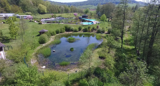 Outdoor pool, natural pool, what to do with toddlers, what to do with kids, where can I go swimming with allergies, allergy friendly, spend the day, environmentally friendly, swimming, summer holiday, explore with kids, no chlorine, natural filters