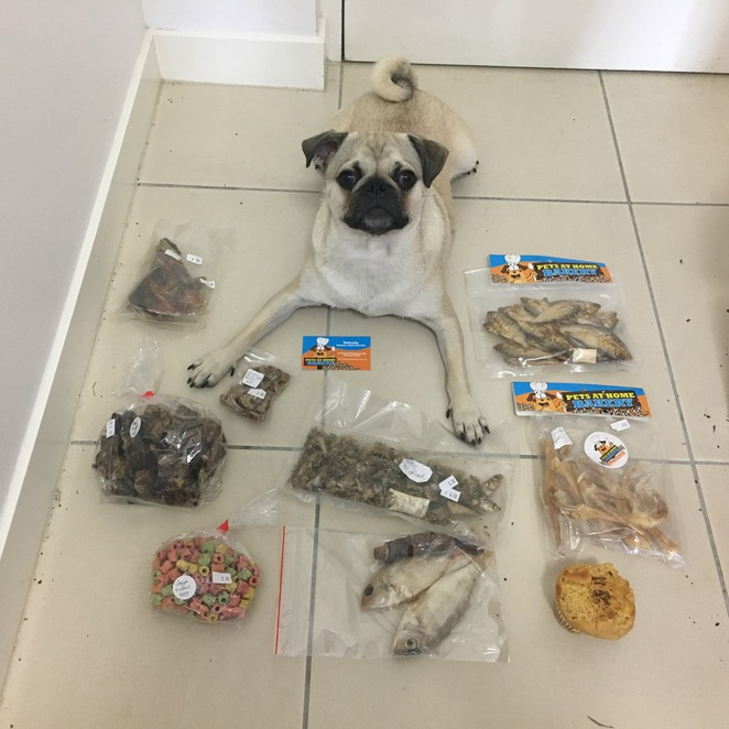 pets at home care, pets at home bakery, dog bakery, pet bakery, brisbane, redlands, victoria point, small business, dog treats, pet treats, pet grooming, hydrobath, pet sitting, rocklea markets, brisbane markets, open 7 days, our place coffee garden, dog friendly