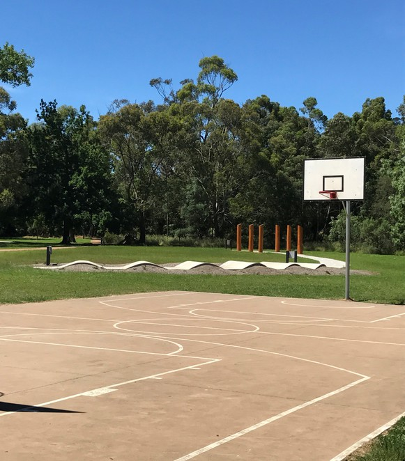Queens Park Free Basketball Family Day Trip
